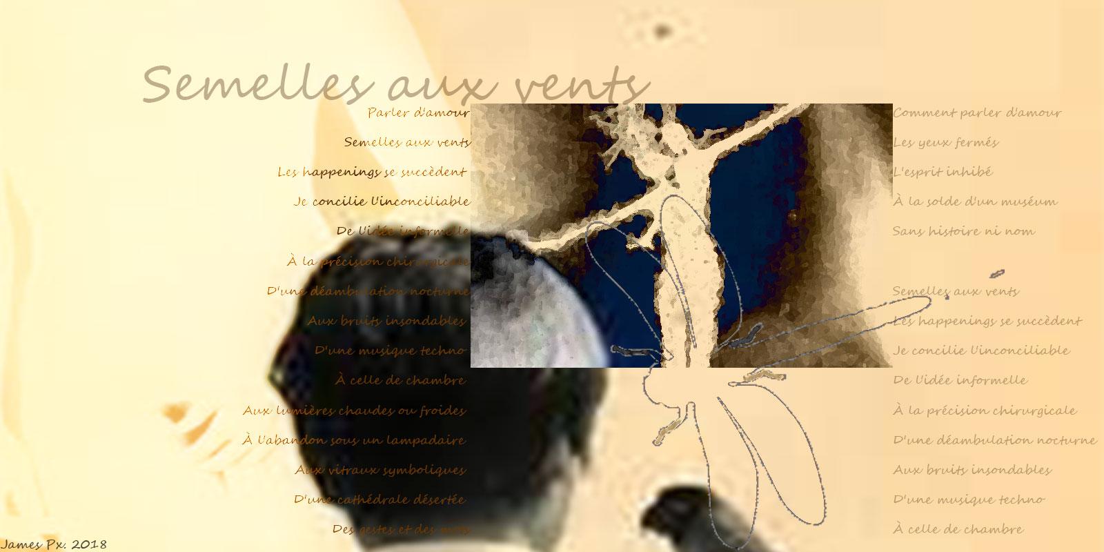 Semelles aux vents 6de4a644e3e95973f25c