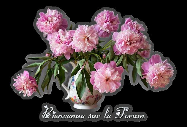 Un petit mot de Françoise-Hélène 121a4512101ef16d920e
