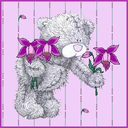 teddy09