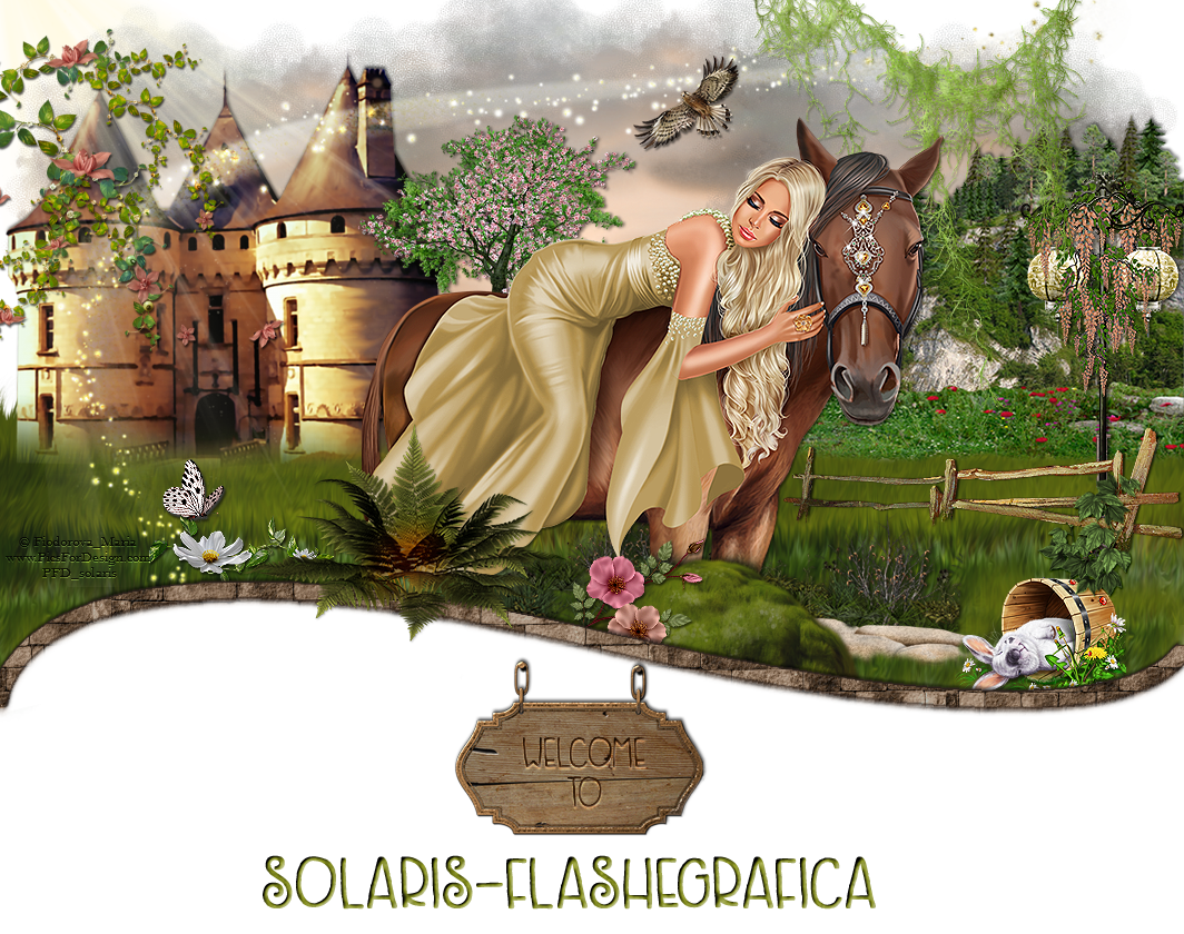 Solaris- flashegrafica
